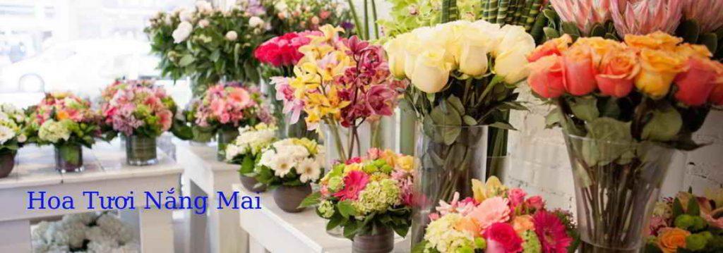 dat-hoa-tuoi-online-gia-re-dathoanhanh