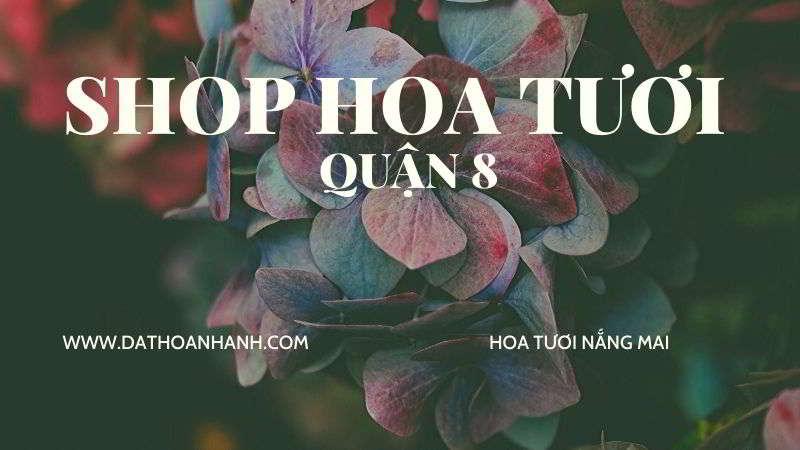 shop-hoa-tuoi-quan-8-tp.hcm